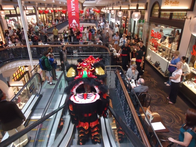 Sydney lion dance team performing at pubs, corporate businesses and retail outlets