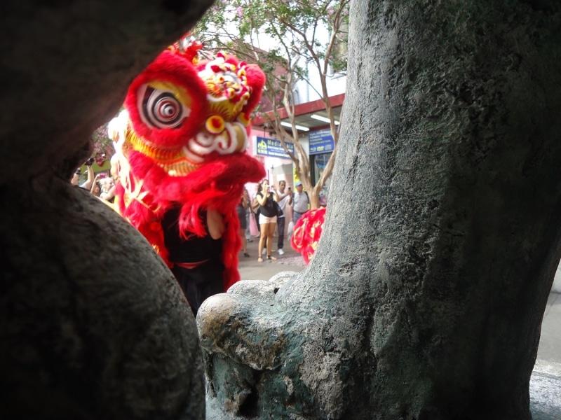 Lion through stone lion